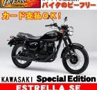 befree-bike_k-estrella-se